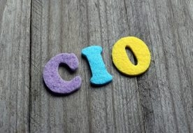 Change Management is a Prime Issue for CIOs
